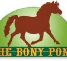 The Bony Pony